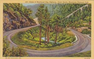Scene Of Newfound Gap Highway Great Smoky Mountains National Park