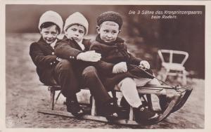 RP: Die 3 Sohne des Kronprinzenpaares beim Rodeln , Germany, 00-10s