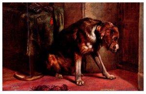 Dog ,  Bloodhound