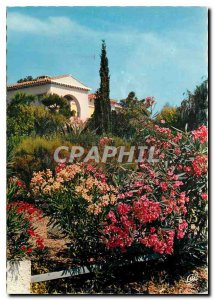 Postcard Modern World Carrefour French Riviera Tourism