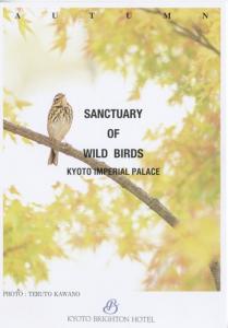 Sanctuary Of Wild Birds Kyoto Imperial Palace Brighton Hotel Postcard D11