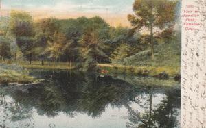 View in Hamilton Park - Waterbury CT, Connecticut - pm 1907 - UDB
