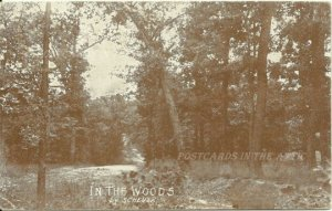 In The Woods by Scheuer - Artist Signed - Sepia 1900s Vintage Postcard