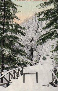 TORONTO, Ontario, Canada, 1900-1910s; A Winter Scene