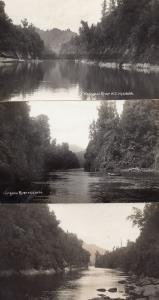 Wanganui River Antique Real Photo New Zealand 3x Postcard s