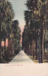 Florida Palm Beach Ocean Walk