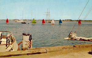 MA - Nantucket. Sailboats, The Rainbow Fleet