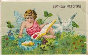 BIRTHDAY, PU-1915; Cherub reading book, Flowers, Four Leaf Clovers, Doves