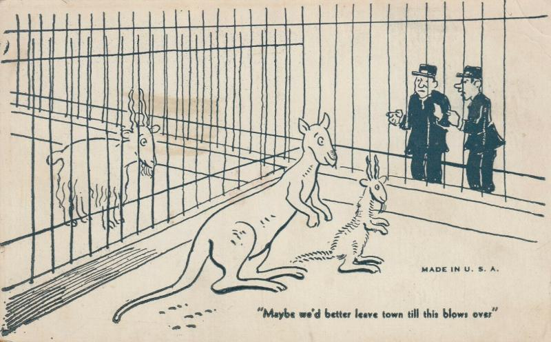 COMIC, 1910s; Zookeepers Eye Kangaroo/Goat Baby, We'd Better Leave Til This Blo