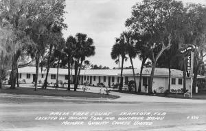 Sarasota Florida~Palm Tree Court~Whitaker Bayou~Tamiami Trail~1951 RPPC