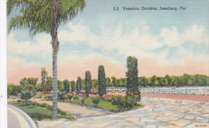 Florida Leesburg The Venetian Gardens Curteich