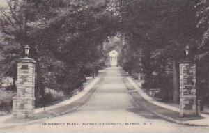 New York Alfred University Place Alfred University Artvue