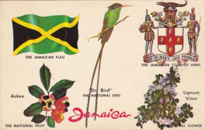 Jamaica National Bird Fruit Flower Coat Of Arms & Flag