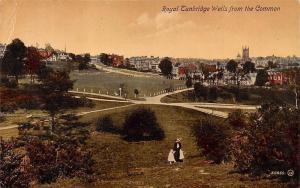 Royal Tunbridge Wells from the Common Panorama