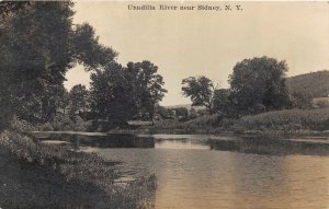 G45/ Sidney New York RPPC Postcard 1913 Unadilla River View