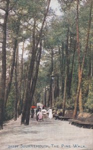 BOURNEMOUTH, Hampshire, England, 1900-1910's; The Pine Walk