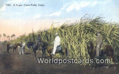 Republic Of Cuba Sugar Cane Field