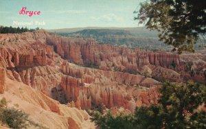 Bryce Canyon Nat'l Park, UT, Bowl, Escalante Mountain, Vintage Postcard g9227