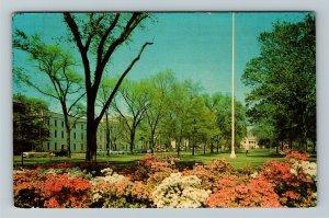 Columbia SC University Of South Carolina Scenic Quadrangle Chrome c1965 Postcard