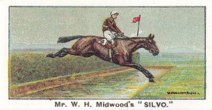 Silvo Winners On The Turf 1923 Lingfield Horse Racing Cigarette Card