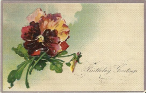 Bouquet of Red Pansies Birthday Greeting Card Red Pansy Vintage Postcard - 1903
