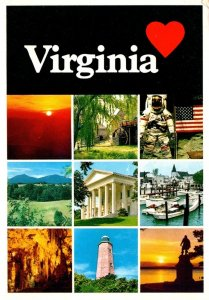 Virginia Is For Lovers Multi View
