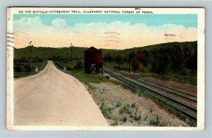 Allegheny Forest PA-Pennsylvania Buffalo Pittsburgh Trail Vintage c1940 Postcard