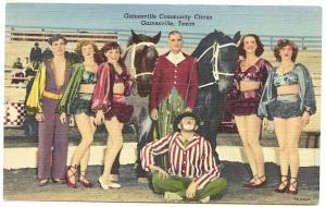 Gainesville TX Community Circus Horses Performers Curteich Linen Postcard