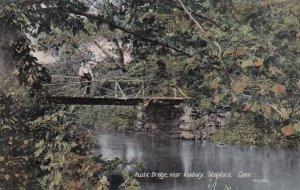 STAMFORD, Connecticut, 1900-1910's; Rustic Bridge