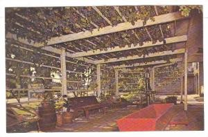 Die Weinstube Winery, Giant Vine, South Amana , Iowa , 40-60s