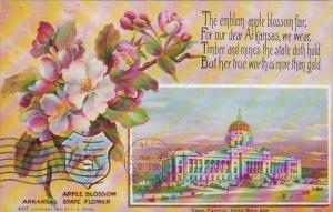 Apple Blossoms and State Capitol Building Little Rock Arkansas 1911