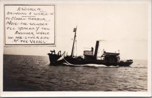 Whaling Ship with Whale Naden Harbour Haida Gwaii BC Whalers RPPC Postcard E20