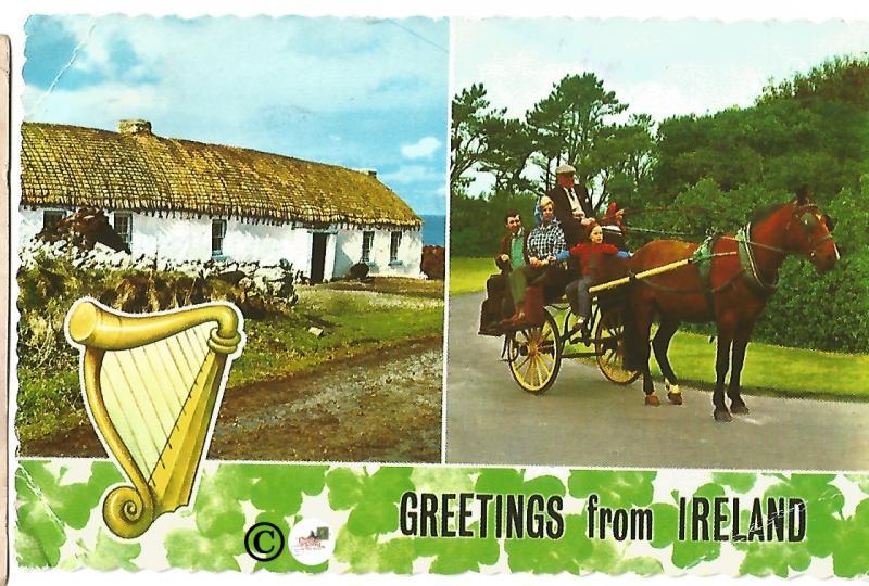 Vintage Postcard Greetings from Ireland Saint Patrick's Day Shamrocks