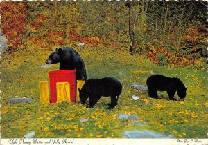 us7087 peanut butter and jelly again black bears canada
