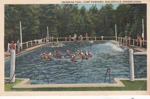 Pennsylvania Arendtsville Swimming Pool Camp Nawakwa 1949