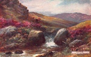 The River Lyd, Near Okehampton, Dartmoor, England, Early Tuck's Postcard, Unused