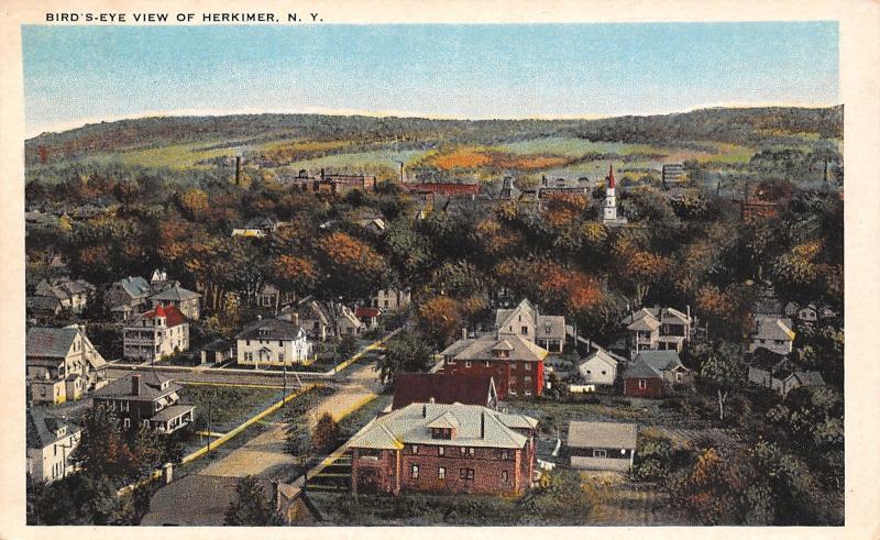 Herkimer New York~Birdseye Homes~Backyards~Church~Town Panorama~1920 Postcard