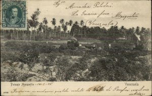 Central Venezuela Paisaje Maiquetia 1905 Used Postcard