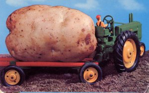 Exaggeration - A Maine Potato