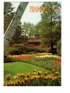 Royal Botanical Gardens, Hamilton, Ontario Large 5X7 Postcard