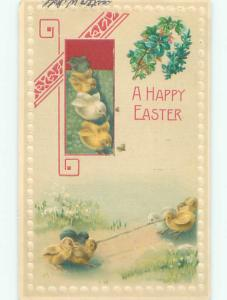 Pre-1907 easter TUG OF WAR - BABY CHICKS FIGHT OVER A WORM o3337