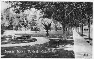 Denair Park, Turlock, California ca 1920s Vintage Postcard