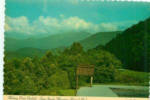 Postcard North Carolina Charlotte Maloney Point Wood Sign Overlook Aeri  # 2911A