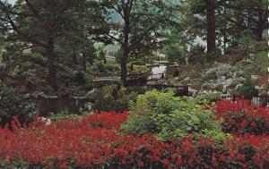 Hillside Gardens overlooking Grenadier Pond in High Park,  Toronto,  Ontario,...