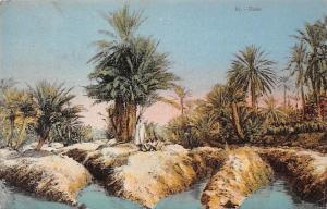 Tunisia Tunisie Oasis, Palm Trees, Natives
