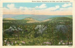 Lake Taneycomo Missouri~Mutton Hollow~Shepherd of Hills~1953 Postcard