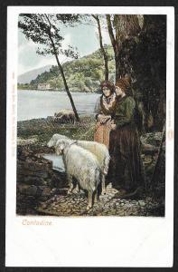 Two Women & Two Sheep at Water SWITZERLAND Unused c1905