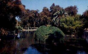 Mooney Grove - Visalia, CA