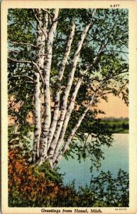 Hessel (Cedarville) Michigan~Look Past the Big Birch Tree to Lake Huron~1934