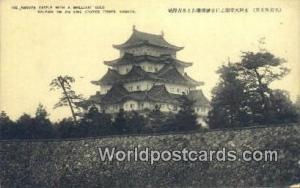 Japan Nagoya Castle Nagoya Nagoya Castle Nagoya
